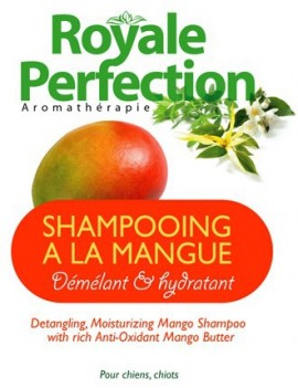 Shampooing Beurre de Mangue Démêlant & Hydratant