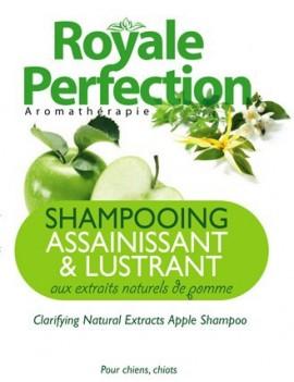 Shampoing Assainissant & Lustrant Extraits Naturel de Pomme