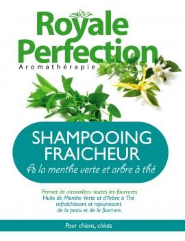 Shampooing Rafraîchissant Menthe Verte et  Arbre à Thé
