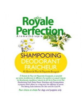 DEODORIZING FRESH DAISY FLOWER4 SHAMPOO