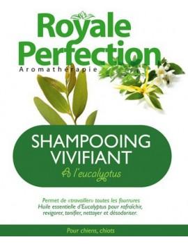 Eucalyptus Tonic Shampoo