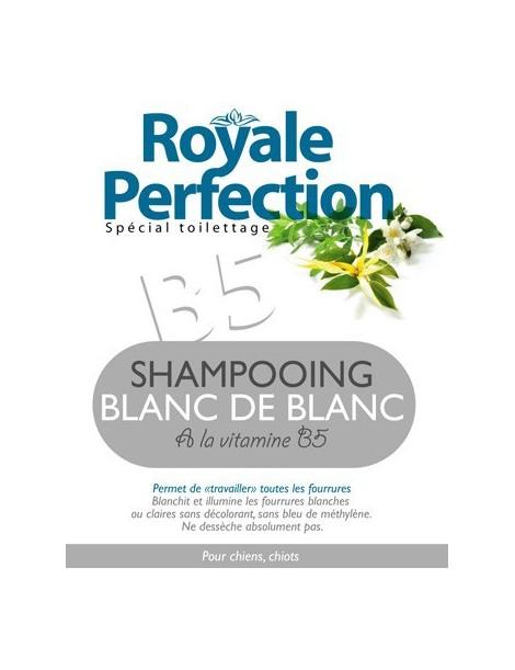 SHAMPOOING BLANC DE BLANC
