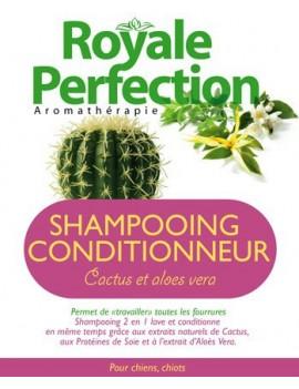 Shampooing Conditionneur Cactus & Aloès Vera