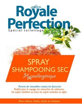 Spray Shampooing Sec