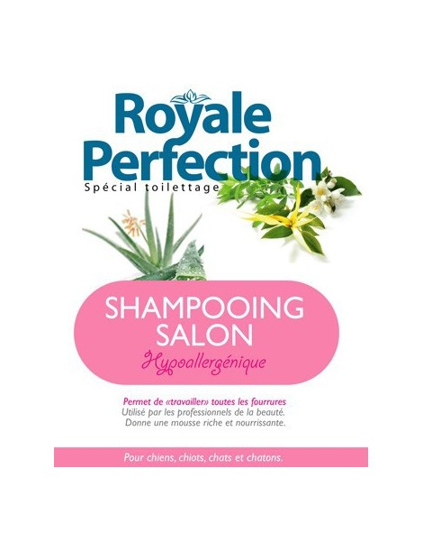 SHAMPOOING SALON