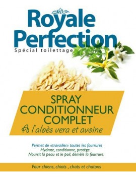 SPRAY CONDITIONNEUR COMPLET